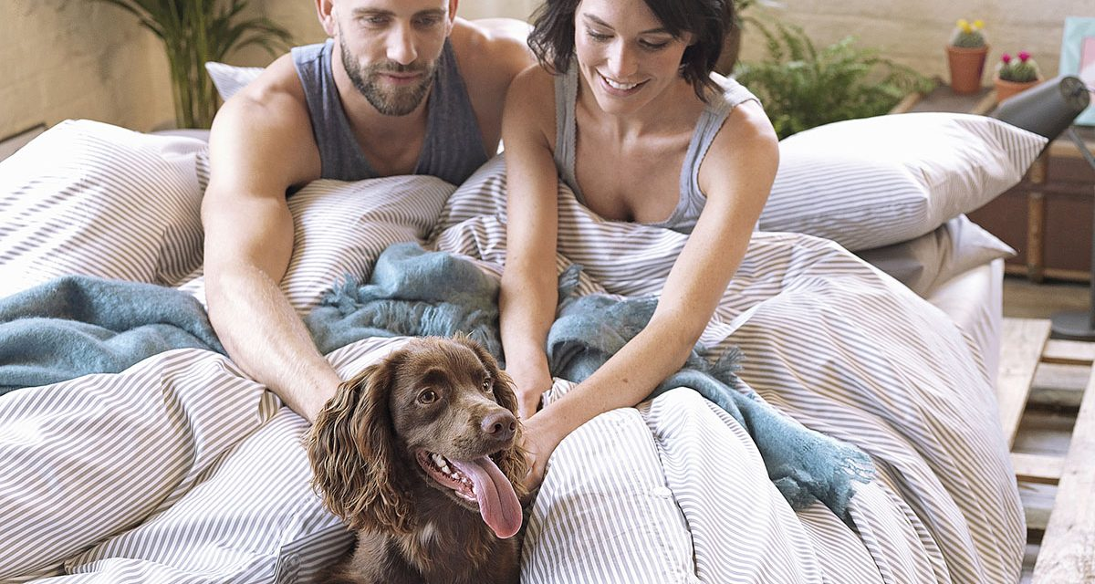WE SPEND A THIRD OF OUR LIFE ASLEEP – BEDDING COMPANY AIMS TO MAKE THE MOST OF IT